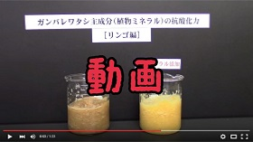 用ガンバレ動画